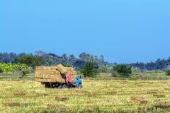 Agricoltore e camion nei campi Fotografia Stock Libera da Diritti