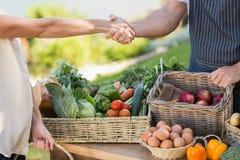 Agricoltore e cliente che stringono le mani Fotografia Stock Libera da Diritti