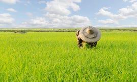 Agricoltore e nuvola Fotografia Stock Libera da Diritti