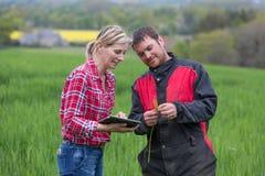 Agricoltore e tecnico che collaborano con l'elettronica Fotografia Stock Libera da Diritti