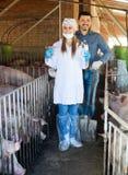 Agricoltore e veterinario che stanno nel porcile Fotografie Stock Libere da Diritti