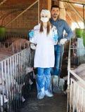 Agricoltore e veterinario in porcile Fotografie Stock Libere da Diritti