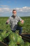 Agricoltore ed anguria Fotografia Stock Libera da Diritti