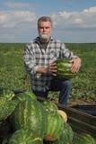Agricoltore ed angurie al rimorchio Immagine Stock Libera da Diritti