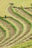 Agricoltore ed azienda agricola Immagini Stock Libere da Diritti