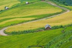 Agricoltore ed azienda agricola Fotografie Stock Libere da Diritti