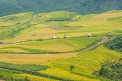 Agricoltore ed azienda agricola Fotografia Stock Libera da Diritti