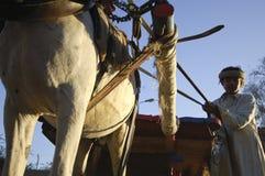 Agricoltore egiziano Riding un trasporto con un asino sulla strada, Il Cairo, Egitto Immagine Stock Libera da Diritti