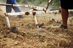 Agricoltore fatto funzionare dopo l'aratro Fotografie Stock