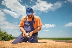Agricoltore felice Immagini Stock