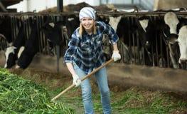 Agricoltore felice che raccoglie erba con la forca Fotografie Stock Libere da Diritti