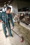 Agricoltore felice che riordina nel granaio Immagini Stock