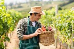 Agricoltore felice che tiene un canestro delle verdure Fotografie Stock Libere da Diritti