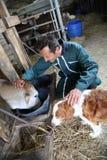 Agricoltore felice con il cane e la mucca Fotografie Stock