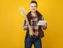 Agricoltore felice della giovane donna con le spighette del grano facendo uso del PC della compressa Fotografia Stock