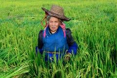 Agricoltore femminile Immagini Stock Libere da Diritti
