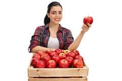 Agricoltore femminile allegro che giudica una mela dietro una cassa piena della a Immagini Stock
