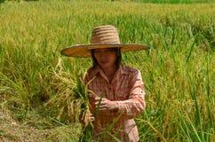 Agricoltore femminile asiatico tradizionale Fotografia Stock