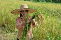 Agricoltore femminile asiatico tradizionale Immagine Stock