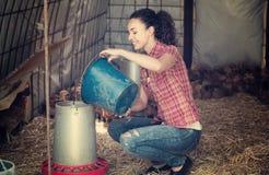 Agricoltore femminile che dà la roba di alimentazione ai polli Fotografie Stock Libere da Diritti