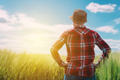 Agricoltore femminile che esamina il sole sull'orizzonte Fotografia Stock Libera da Diritti