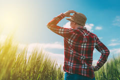Agricoltore femminile che esamina il sole sull'orizzonte Fotografie Stock