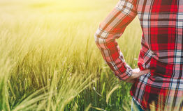 Agricoltore femminile che esamina il sole sull'orizzonte Immagini Stock
