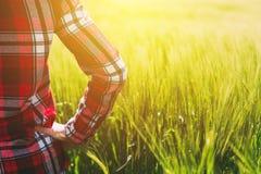 Agricoltore femminile che esamina il sole sull'orizzonte Fotografia Stock