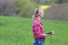Agricoltore femminile che esamina risultato dell'antiparassitario su cereale Fotografie Stock Libere da Diritti