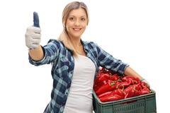 Agricoltore femminile che giudica una cassa piena dei peperoni Fotografie Stock Libere da Diritti