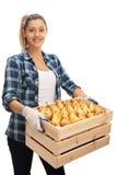 Agricoltore femminile che giudica una cassa piena delle pere Fotografie Stock