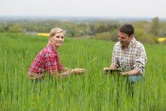 Agricoltore femminile che lavora nell'azienda agricola Fotografia Stock