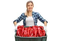 Agricoltore femminile che offre una cassa in pieno dei peperoni Fotografia Stock Libera da Diritti