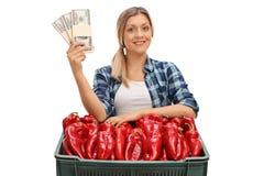Agricoltore femminile che posa con i pacchi dei soldi e della cassa Immagini Stock