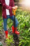 Agricoltore femminile che posa con la pala sul letto del giardino al giorno soleggiato Fotografia Stock