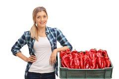 Agricoltore femminile che si appoggia cassa in pieno dei peperoni Fotografia Stock
