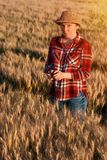 Agricoltore femminile che sta nel giacimento di grano e che per mezzo del telefono cellulare Fotografia Stock Libera da Diritti