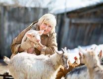Agricoltore femminile che tiene un piccolo maiale Fotografie Stock
