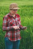Agricoltore femminile che utilizza il computer della compressa nel campo del raccolto del grano Immagini Stock Libere da Diritti