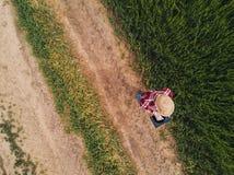 Agricoltore femminile che utilizza il computer digitale della compressa nel giacimento di grano verde Fotografie Stock
