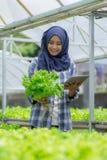 Agricoltore femminile con la compressa Fotografia Stock Libera da Diritti