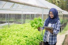 Agricoltore femminile con la compressa Fotografie Stock Libere da Diritti