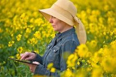 Agricoltore femminile con la compressa di Digital in seme di ravizzone del seme oleifero coltivato Fotografie Stock Libere da Diritti