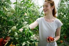Agricoltore femminile felice attraente che lavora nella serra Immagine Stock
