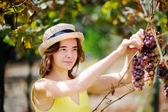 Agricoltore femminile felice che lavora nel frutteto di frutta Fotografie Stock Libere da Diritti