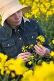 Agricoltore femminile nel giacimento agricolo coltivato seme di ravizzone del seme oleifero Fotografie Stock Libere da Diritti