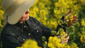 Agricoltore femminile nel giacimento agricolo coltivato seme di ravizzone del seme oleifero che esamina e che controlla la cresci stock footage