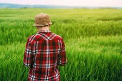 Agricoltore femminile nel giacimento di grano da dietro Immagine Stock Libera da Diritti