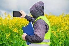 Agricoltore filmato con il campo della violenza di giallo del PC della compressa Immagine Stock Libera da Diritti