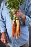 Agricoltore Fresh Organic Carrots Fotografia Stock